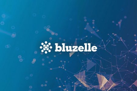 Bluzelle Guide