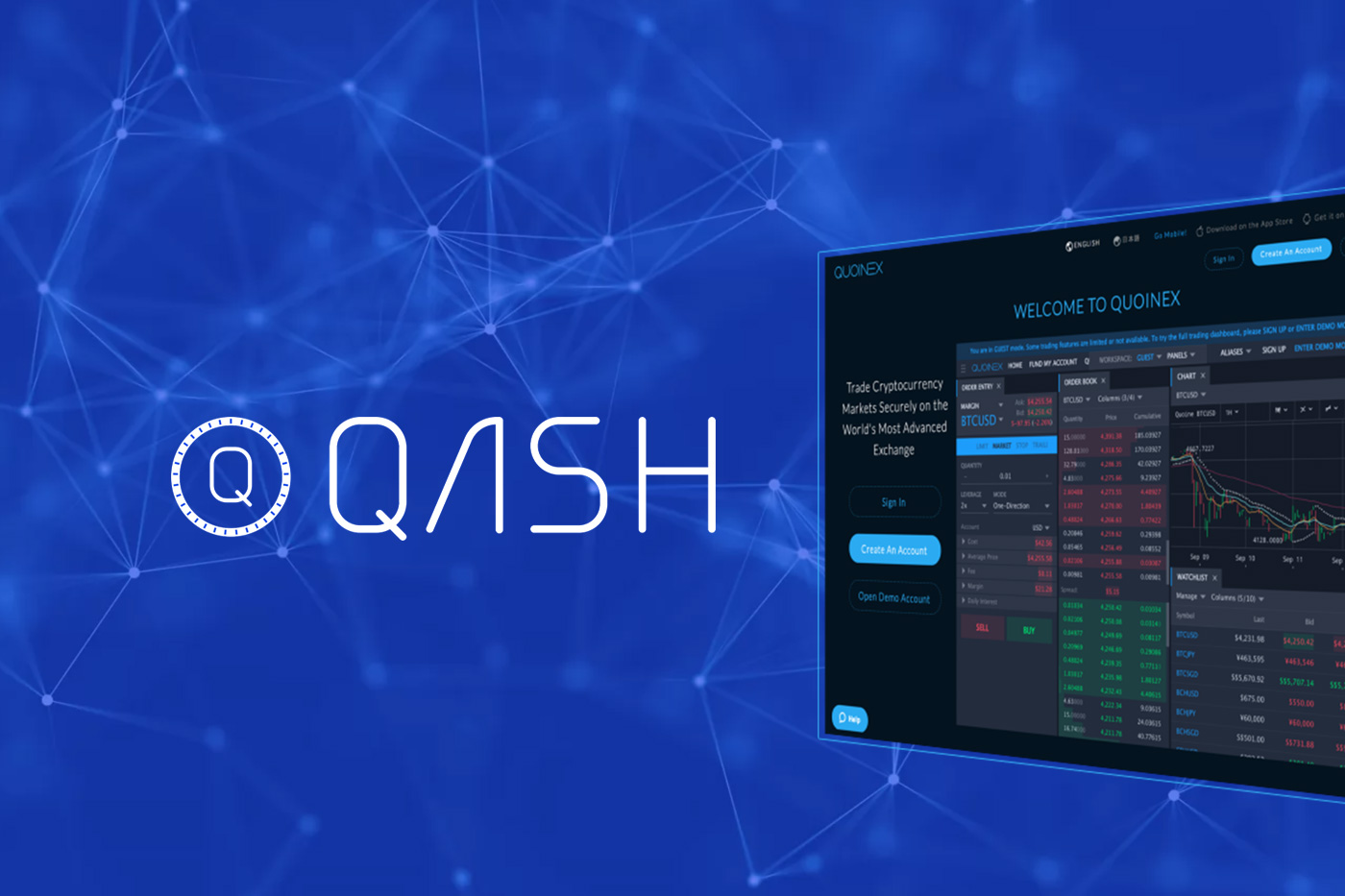 Beginner's Guide & How to Buy QASH: Information & Review | When Moon