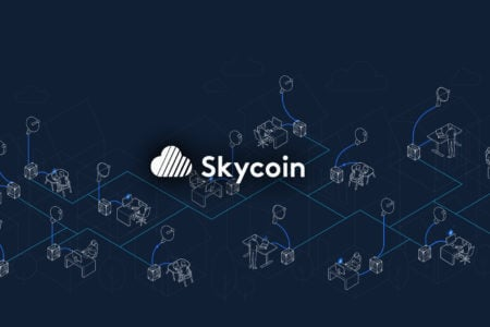 Skycoin Guide