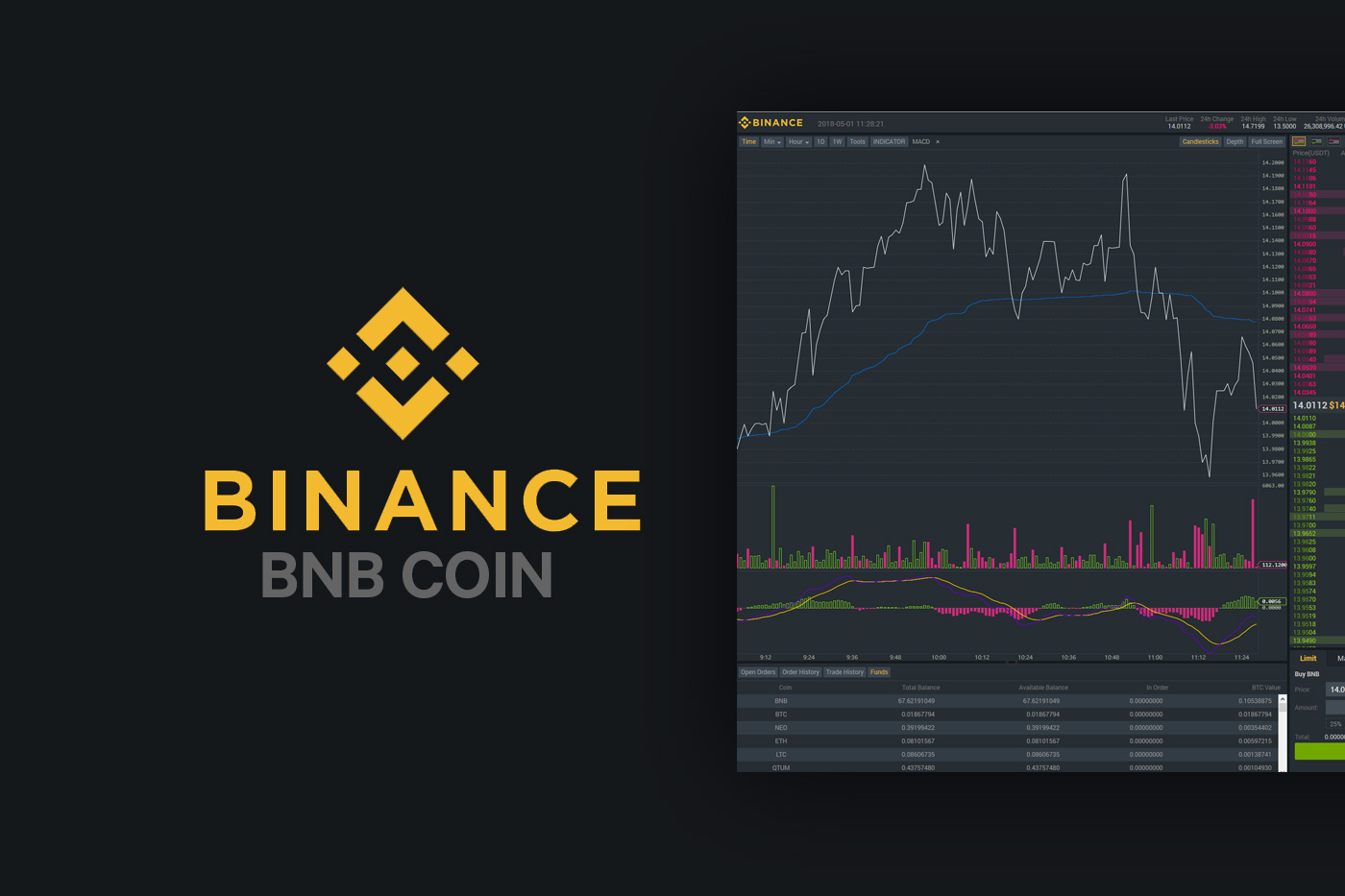 Binance BNB Coin