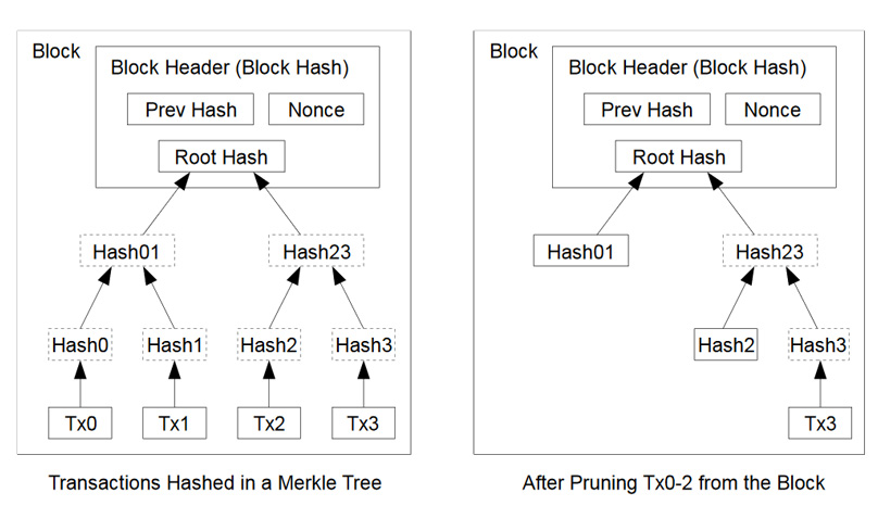 What is a Merkle Tree? Beginner's Guide to this Blockchain