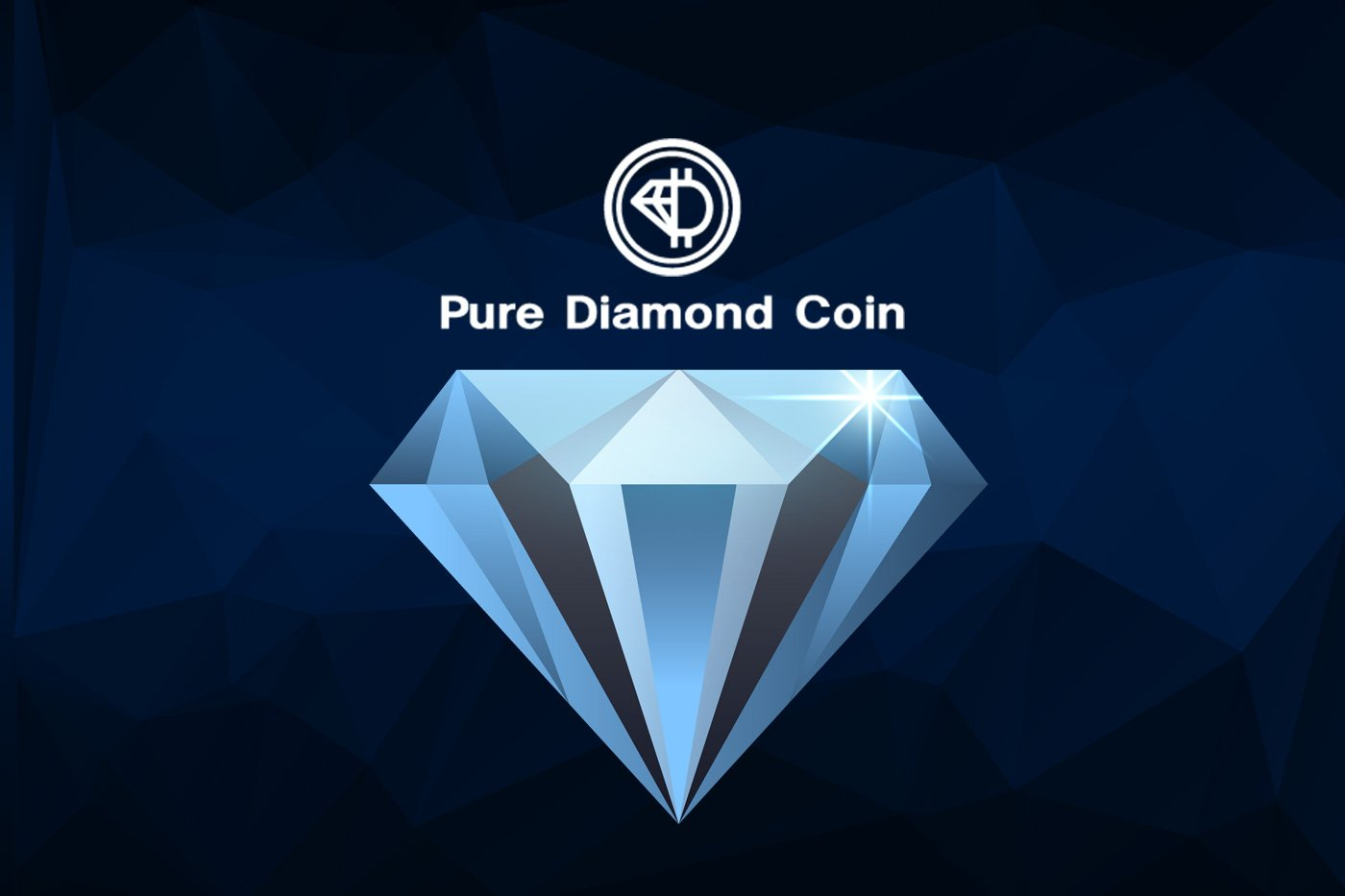 Pure Diamond Coin