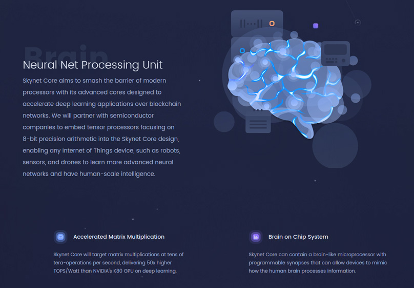 Neural Net Processing Unit