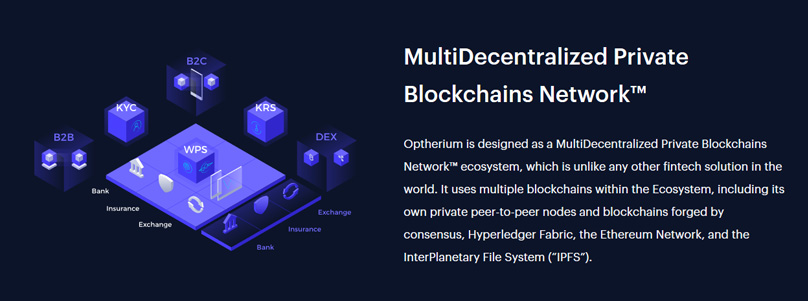 MultiDecentralized Private Blockchains Network™