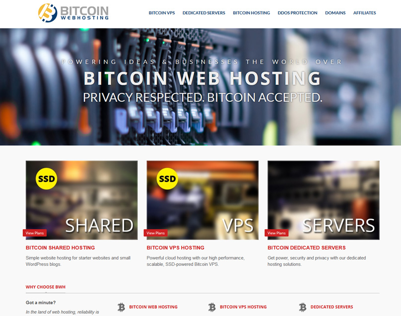 Bitcoin Web Hosting
